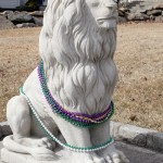 lion statues dressed for mardi gras