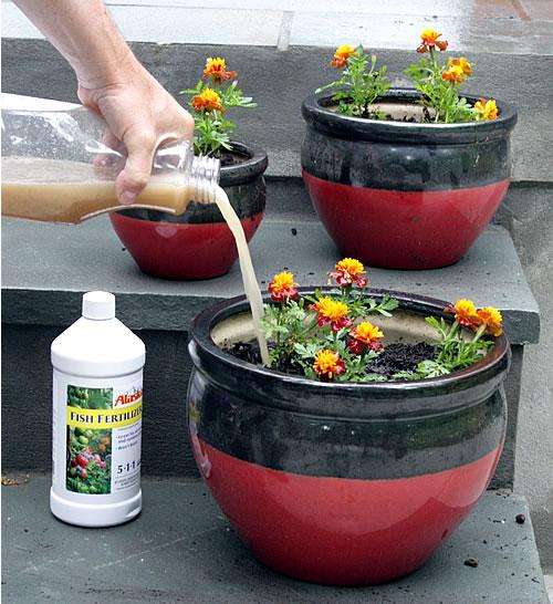 mixed organic fertilizer